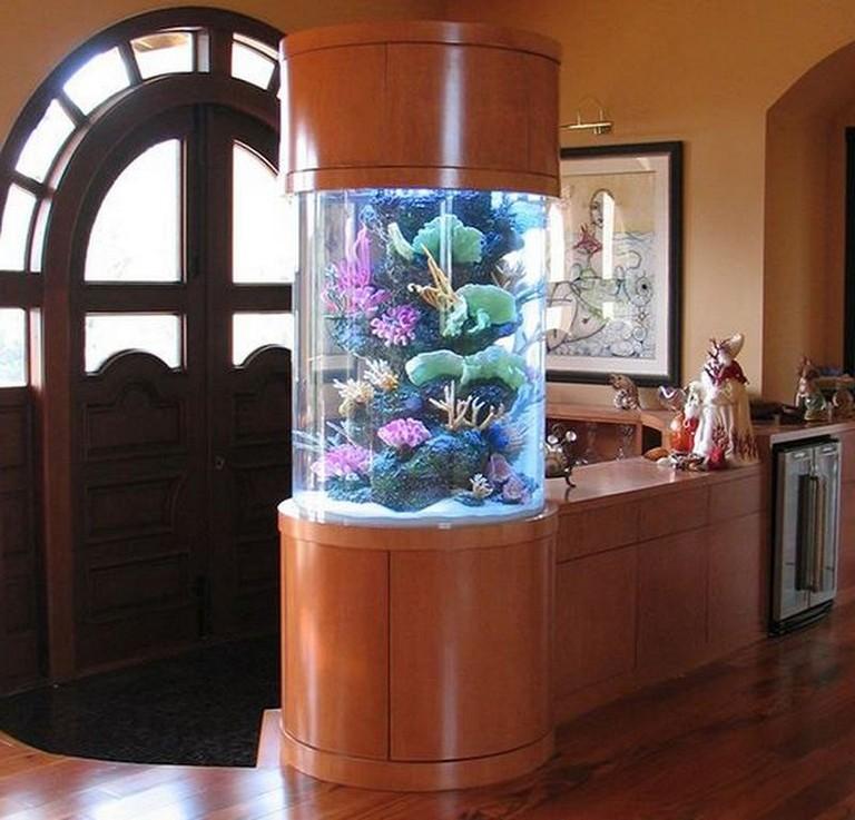 18+ Incredible Indoor Aquarium Design Ideas For Inspiring